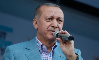 Erdoğan'ın oy kullandığı sandığın sonuçları