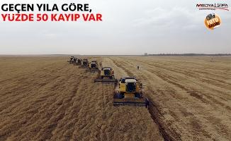 """""""Yağışlar buğday gelişimini olumsuz etkiledi"""""""