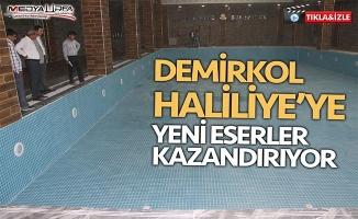 Demirkol Haliliye'ye yeni eserler kazandırıyor!