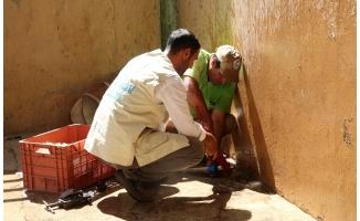 Haliliye'de kurban kesim ve satış yerleri belirlendi