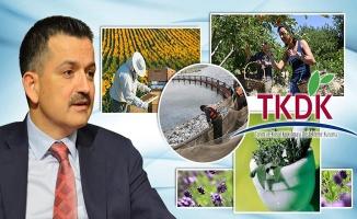 Tarımda Kırsal Kalkınmaya 245 Milyon TL Hibe Desteği