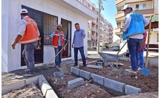 Ceylanpınarlılar Zeytin Dalı Parkı'na kavuşuyor
