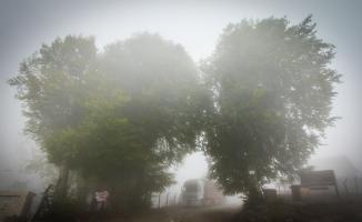 Domaniç Dağı'nda yoğun sis