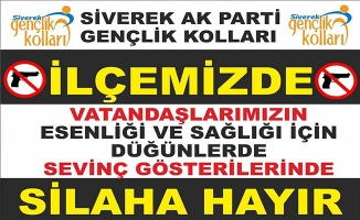 Siverek'te Silaha Hayır Kampanyası
