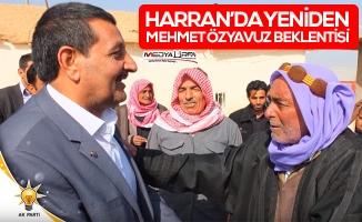Benim Adayım: Mehmet Özyavuz