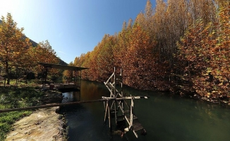 Beyazsu'da sonbahar güzelliği