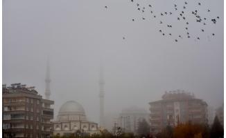 Şanlıurfa'da sis etkili oluyor!