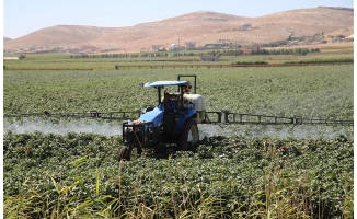 Urfa'da alerjik astım şikayetleri artıyor