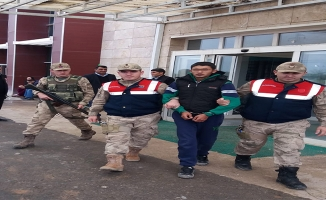 Akçakale'de 1 terörist yakalandı