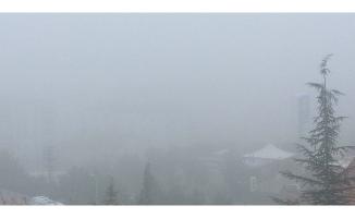 Urfa'nın 3 ilçesinde yoğun sis!