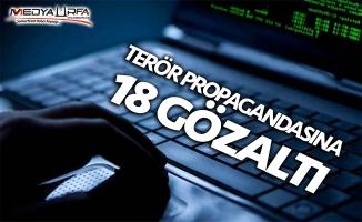 Ceylanpınar'da 18 kişiye terör gözaltısı!