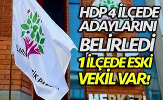 HDP 4 ilçede adaylarını belirledi!