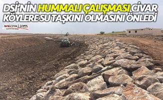 Viranşehir Divane deresi taşkınlardan korundu!