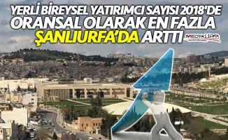 Yerli bireysel yatırımcı en fazla Urfa'da arttı!