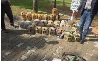 Urfa'da 28 kınalı keklik doğaya bırakıldı