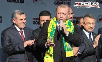 Erdoğan Şanlıurfalıları Tebrik Etti