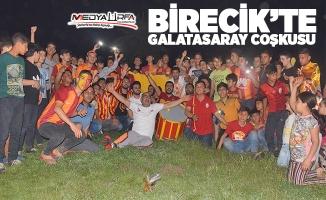 Galatasaray'ın şampiyonluğu Birecik'te kutlandı