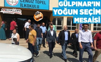 Gülpınar'ın yoğun İstanbul seçimi mesaisi