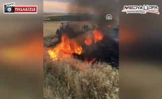 Siverek'te anız yangını