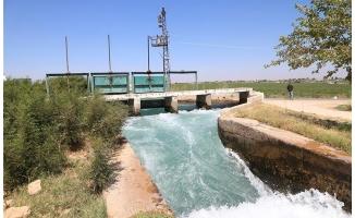 Haliliye'de sulama kanalına giren kişi kayboldu