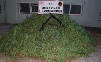 Şanlıurfa'da 4 ayrı uyuşturucu operasyonu