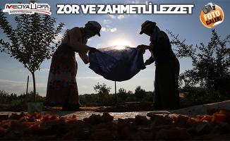 """""""Azezi üzümü""""nün şifalı lezzetlere yolculuğu başladı"""