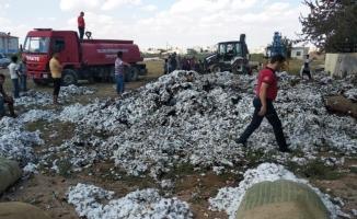 Suruç'ta hasat edilen pamuk yandı