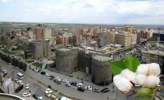 Diyarbakır pamuğu artık ilin adıyla satılacak
