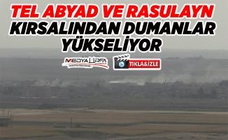 Tel Abyad ve Rasulayn'dan dumanlar yükseliyor