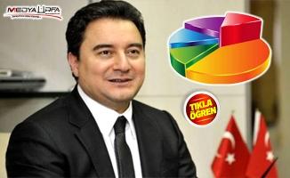 Ali Babacan ile ilgili anket sonuçları açıklandı!