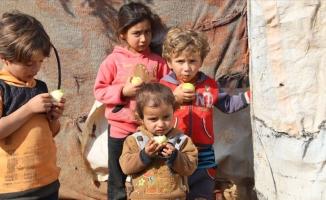 Suriye'deki çadır kentlerde meyve dağıtıldı