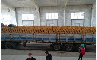 80 ton meyve bağışı meclise teslim edildi!