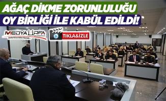 Haliliye Belediye Meclisi'nden tarihi karar