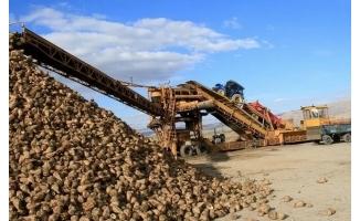 Şeker Fabrikası Urfalı çiftçilerin pancarını işledi