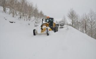 Van ve Bitlis'te yollar kar nedeniyle kapandı