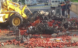 Birecik'te devrilen kamyonun sürücüsü öldü