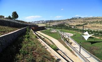 Büyükşehir'den yeşil atağı