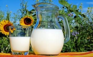 'Güçlü bağışıklık sistemi için süt için' önerisi