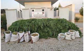 Halfeti'de uyuşturucu operasyonunda 3 şüpheli tutuklandı