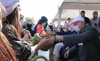 Binali Yıldırım Şanlıurfa'da fıstık hasadına katıldı