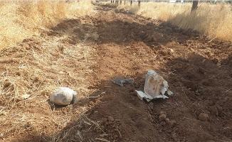 Şanlıurfa'da toprağa gömülü halde patlayıcı bulundu