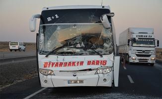 Şanlıurfa'da yolcu otobüsü tıra çarptı: 1 yaralı