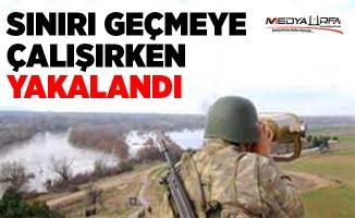 Akçakale'de bir PKK'lı terörist yakalandı