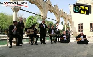 Haliliye Belediyesi, Etkinlikleri Dijitale Taşıdı
