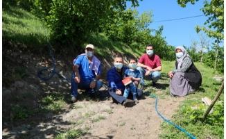 Sonel: Tam kapanma süreci fındık bahçeleri için bir fırsat