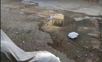 Eyyübiye'de bir garip yol hikayesi