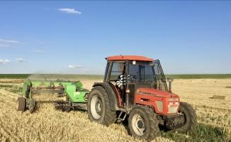 Tahıl ve sebzede bu yıl üretimin azalacak