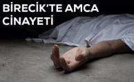 Birecik#039;te Tartışığı Amcasını Öldürdü