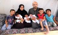Suriyeli Çiftin Üçüz Bebek Sevinci