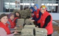 Gençlik Merkezleri#039;nden Zeytin Dalı Harekatı#039;na destek